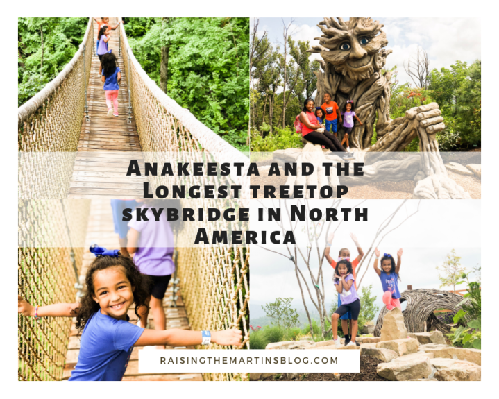 Anakeesta and the Longest Treetop Skybridge in North America